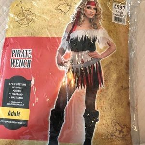 Sexy Pirate Wench fits up to size 12